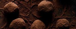 medium-chocolate